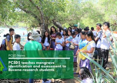 PCSDS teaches mangrove identification and assessment to Bucana research students