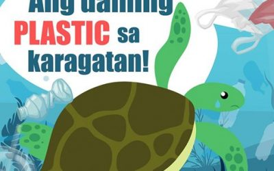 """City Ordinance No. 993 o ang """"Single-Use-Plastic and Styrofoam Regulation"""""""